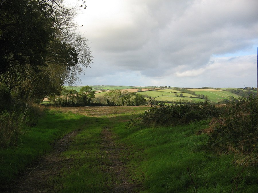 Bridleway 17 Chantry to Combe and Wakeham Lane