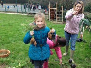 School - Gardening7