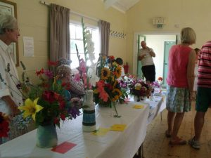 Village show 2015 - flower entries