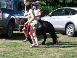 2018 pony rides